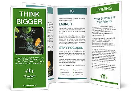 0000063084 Brochure Template
