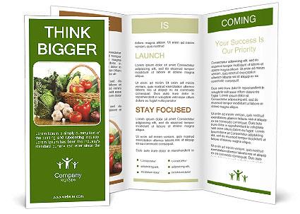 0000063093 Brochure Templates