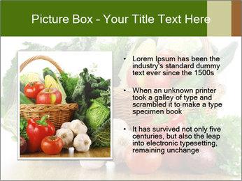0000063093 PowerPoint Template - Slide 13
