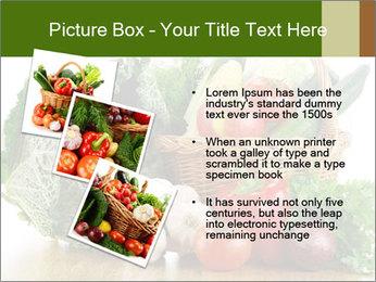 0000063093 PowerPoint Template - Slide 17