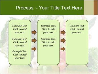 0000063093 PowerPoint Template - Slide 86