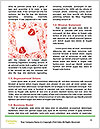 0000063101 Word Template - Page 4