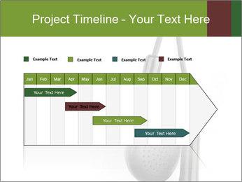 0000063106 PowerPoint Templates - Slide 25