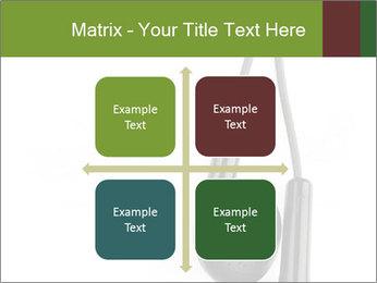 0000063106 PowerPoint Templates - Slide 37