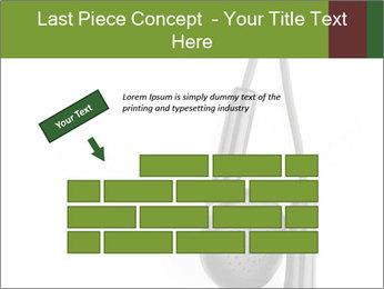 0000063106 PowerPoint Templates - Slide 46