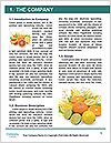 0000063108 Word Templates - Page 3