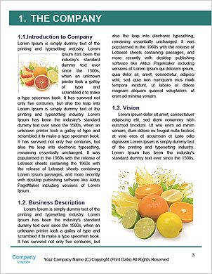 0000063108 Word Template - Page 3