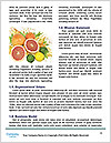 0000063108 Word Templates - Page 4