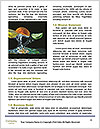 0000063120 Word Templates - Page 4