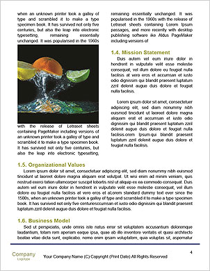 0000063120 Word Template - Page 4