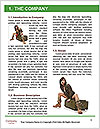 0000063131 Word Templates - Page 3