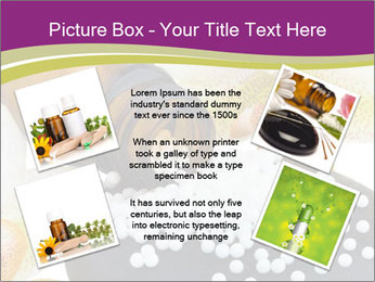 0000063134 PowerPoint Templates - Slide 24