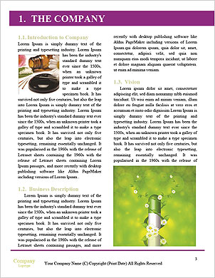 0000063134 Word Template - Page 3