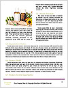 0000063134 Word Template - Page 4