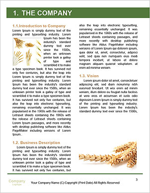 0000063147 Word Template - Page 3