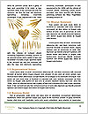 0000063147 Word Templates - Page 4