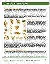 0000063147 Word Templates - Page 8