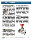 0000063153 Word Template - Page 3