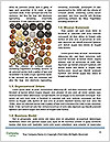 0000063153 Word Template - Page 4