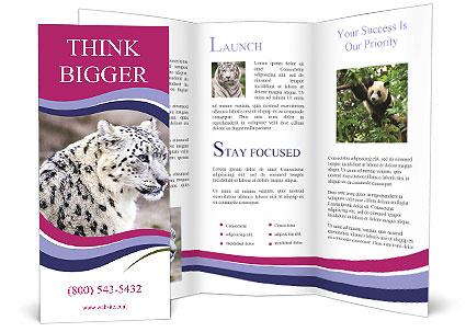 0000063156 Brochure Templates