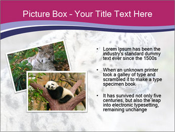 0000063156 PowerPoint Templates - Slide 20