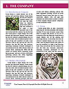0000063156 Word Template - Page 3