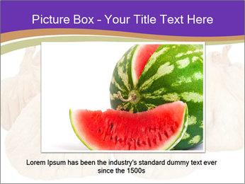 0000063161 PowerPoint Template - Slide 15