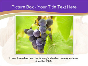 0000063161 PowerPoint Template - Slide 16
