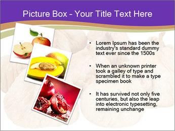 0000063161 PowerPoint Template - Slide 17