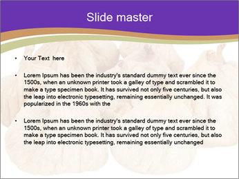0000063161 PowerPoint Template - Slide 2