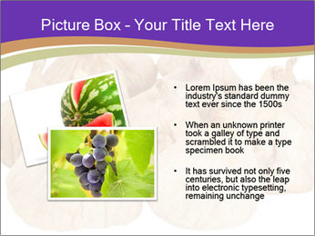 0000063161 PowerPoint Template - Slide 20