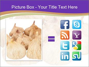 0000063161 PowerPoint Template - Slide 21