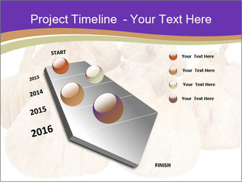 0000063161 PowerPoint Template - Slide 26