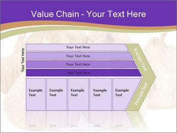 0000063161 PowerPoint Template - Slide 27