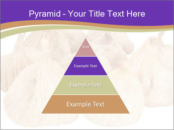 0000063161 PowerPoint Template - Slide 30