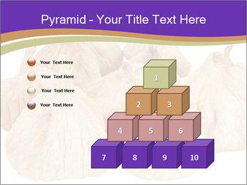 0000063161 PowerPoint Template - Slide 31