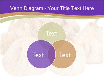 0000063161 PowerPoint Template - Slide 33
