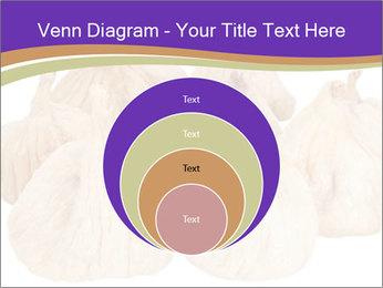 0000063161 PowerPoint Template - Slide 34