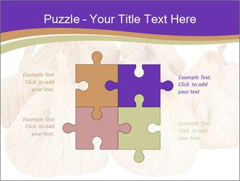 0000063161 PowerPoint Template - Slide 43