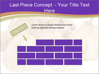 0000063161 PowerPoint Template - Slide 46