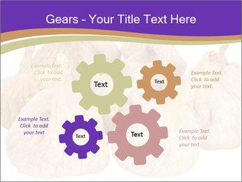 0000063161 PowerPoint Template - Slide 47