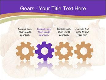 0000063161 PowerPoint Template - Slide 48