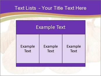 0000063161 PowerPoint Template - Slide 59