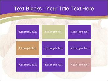 0000063161 PowerPoint Template - Slide 68