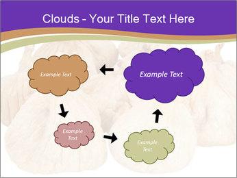 0000063161 PowerPoint Template - Slide 72