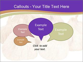 0000063161 PowerPoint Template - Slide 73