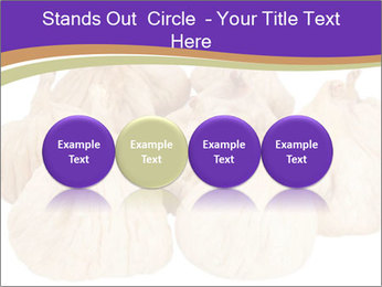 0000063161 PowerPoint Template - Slide 76