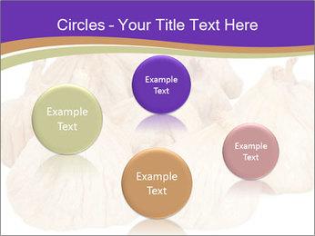 0000063161 PowerPoint Template - Slide 77