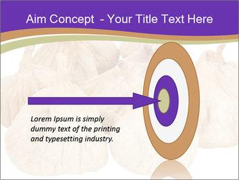 0000063161 PowerPoint Template - Slide 83