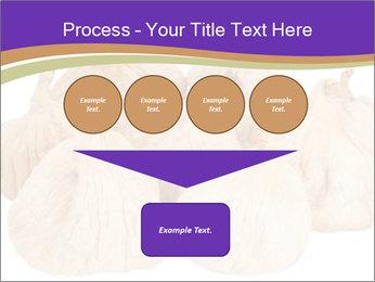 0000063161 PowerPoint Template - Slide 93